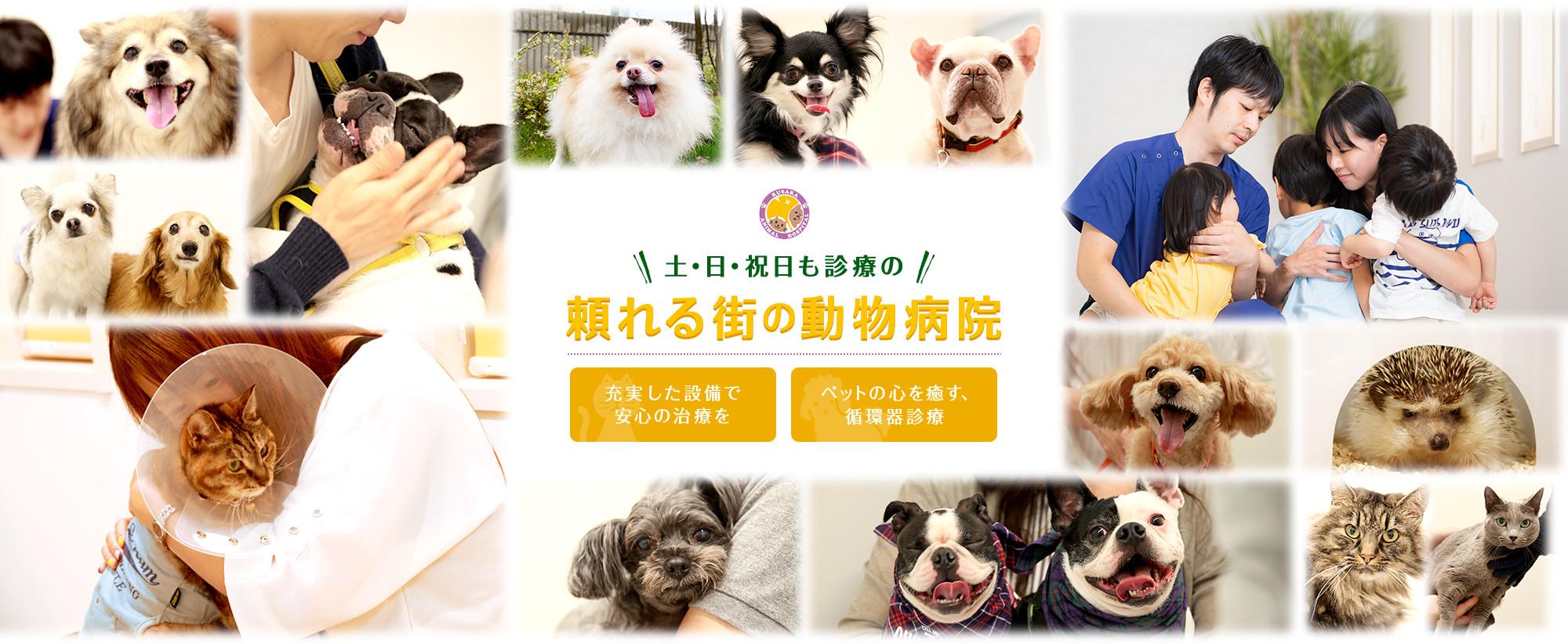 土・日・祝も診療の頼れる街の動物病院