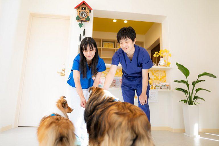 コンセプト|くさか動物病院